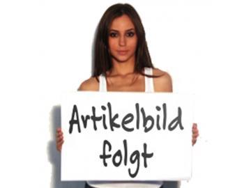 Klappdeckel Dauerbrandofen Alkor 183.12